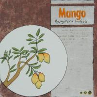 Mangokort, illustration by Jenny Moberg.